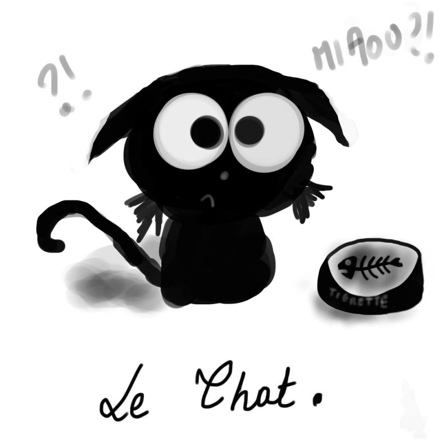 LeChat.jpg